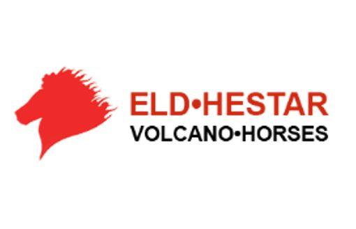 Vulcano horses Iceland