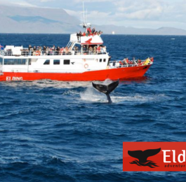 Elding - Adventures at Sea